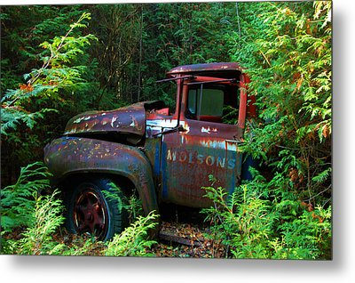 The Lost Delivery Metal Print by Ron Haist