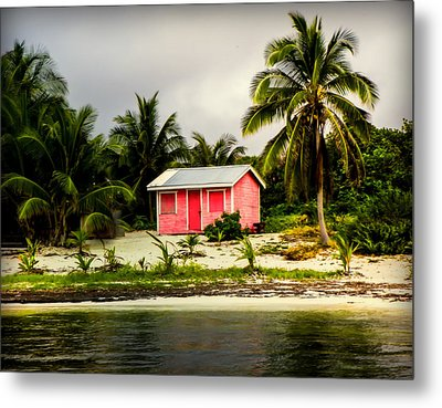The Love Shack Metal Print by Karen Wiles