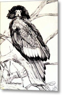 The Majestic Russian Stellar Eagle Metal Print by Cheryl Poland