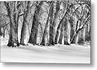 The Noreaster Bw Metal Print by JC Findley
