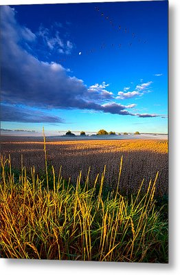 The Northern Winds Sing A Lullaby Metal Print by Phil Koch