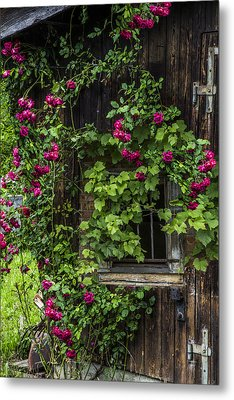 The Old Barn Window Metal Print by Debra and Dave Vanderlaan