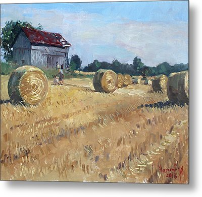 The Old Barns In Georgetown On Metal Print by Ylli Haruni