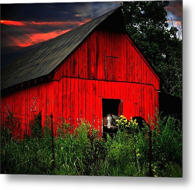 The Old Frederick Barn Metal Print by Julie Dant