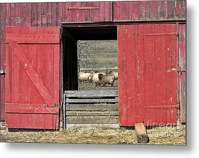 The Old Sheep Barn Metal Print by Olivier Le Queinec