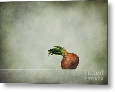 The Onions Metal Print by Diana Kraleva