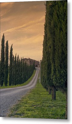 The Path Home Metal Print by Andrew Soundarajan
