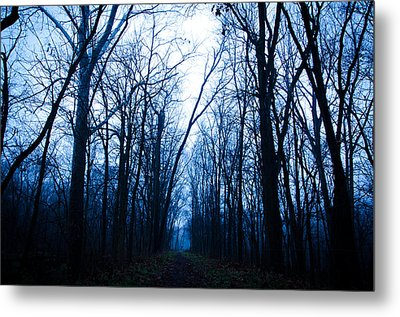 The Path Metal Print by Off The Beaten Path Photography - Andrew Alexander