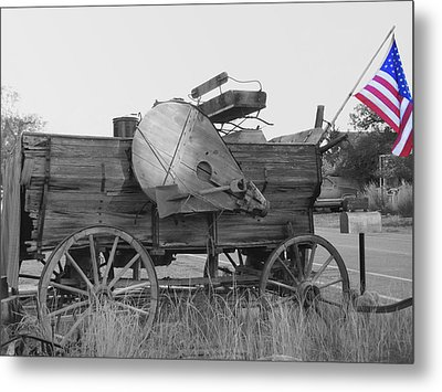 The Patriot Metal Print by Ann Powell