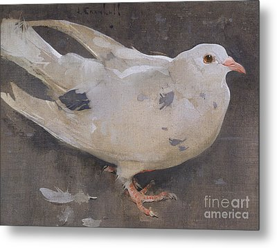 The Pigeon Metal Print by Joseph Crawhall