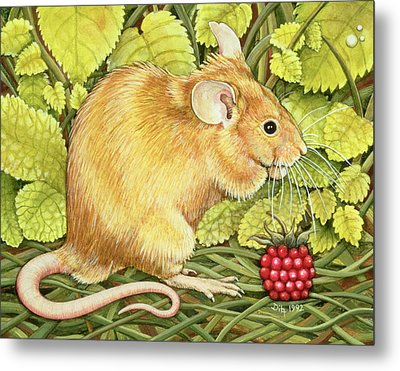 The Raspberry Mouse Metal Print by Ditz