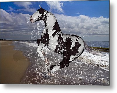 The Rite To Freedom Metal Print by Betsy C Knapp
