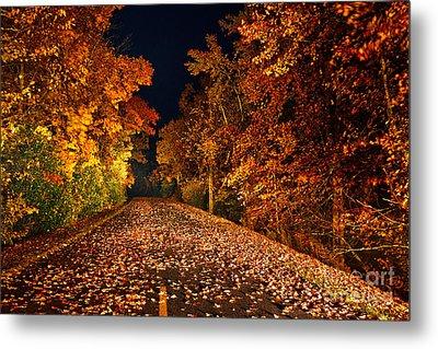 The Road Less Traveled - Blue Ridge Parkway I Metal Print by Dan Carmichael