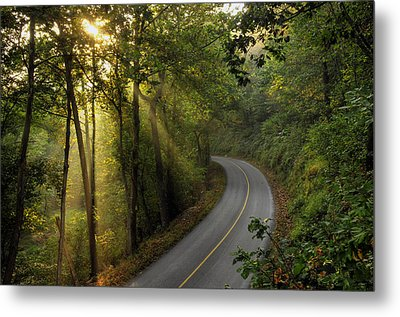 The Road Less Traveled Metal Print by Dan Myers