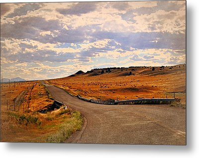 The Road Less Traveled Metal Print by Marty Koch