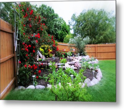 The Roses Are Blooming Metal Print by Kay Novy