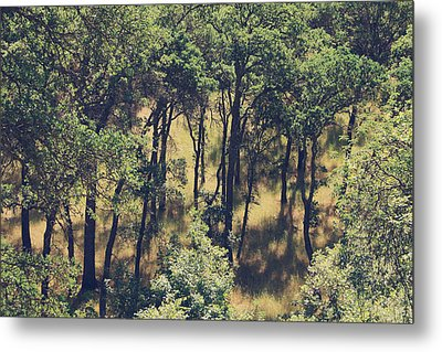 The Shades And Shadows Metal Print by Laurie Search
