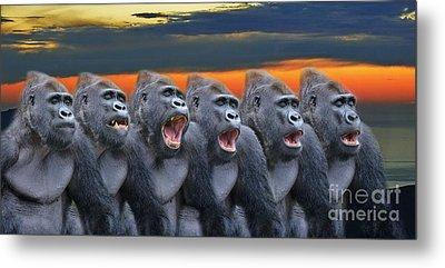 The Singing Gorillas Metal Print by Jim Fitzpatrick