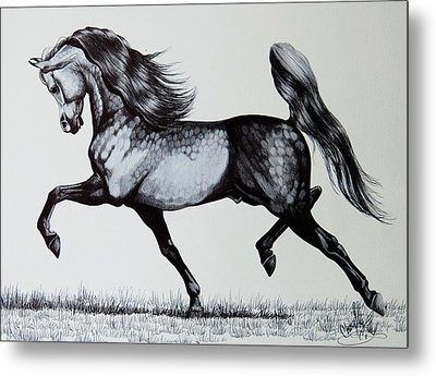 The Spirited Arabian Horse Metal Print by Cheryl Poland
