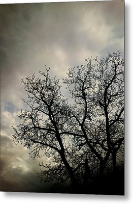 The Storm Metal Print by Lucy D