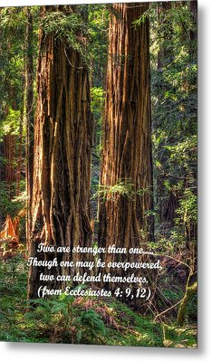 The Strength Of Two - From Ecclesiastes 4.9 And 4.12 - Muir Woods National Monument Metal Print by Michael Mazaika