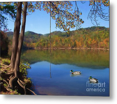The Swimming Hole Metal Print by Lena Auxier