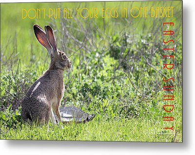 The Tortoise And The Hare Dont Put All Your Eggs In One Basket Easter Sunday 40d12379 Metal Print by Wingsdomain Art and Photography