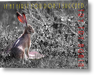 The Tortoise And The Hare Try Try Again 40d12379 Black And White Metal Print by Wingsdomain Art and Photography