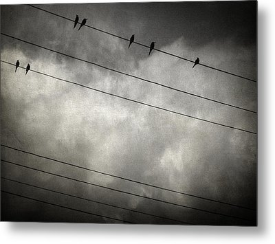 The Trace 11.24 Metal Print by Taylan Soyturk