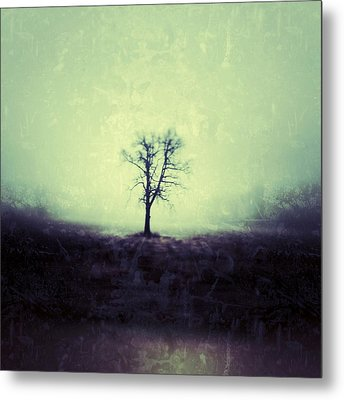 The Tree Metal Print by Jeff Klingler