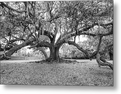 The Tree Of Life Monochrome Metal Print by Steve Harrington
