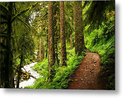 The Twisting Path Winding Through Paradise  Metal Print by Jeff  Swan