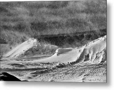 The Way Life Should Be Metal Print by Susan Capuano