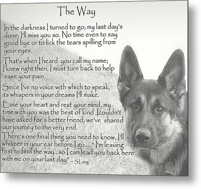 The Way Metal Print by Sue Long