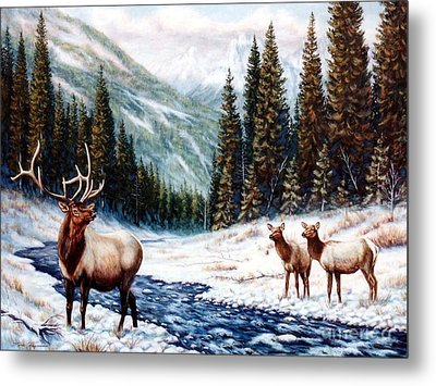 The Wild Country Metal Print by Tom Chapman