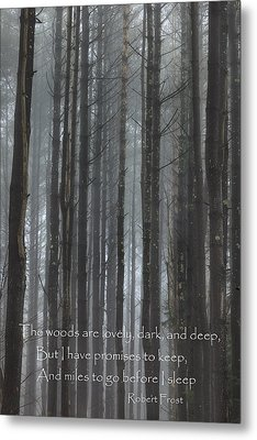 The Woods Metal Print by Bill Wakeley