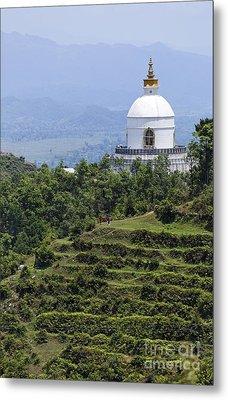The World Peace Pagoda Pokhara Metal Print by Robert Preston