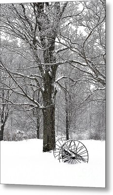 There Is A Kind Of Hush Metal Print by Diane E Berry