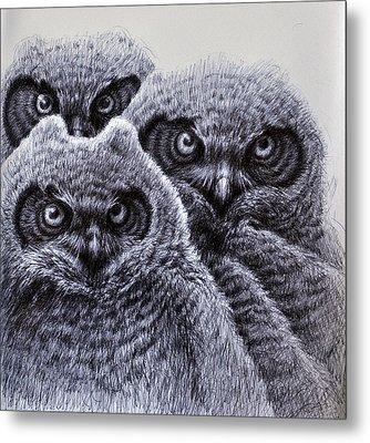 Three Amigos Metal Print by Rick Hansen