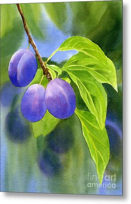 Three Purple Plums With Background Metal Print by Sharon Freeman
