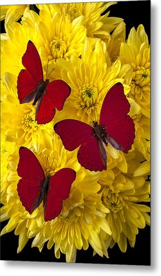 Three Red Butterflys Metal Print by Garry Gay