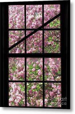Through An Old Window Metal Print by Olivier Le Queinec