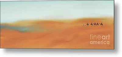 Through The Desert Metal Print by Hannes Cmarits