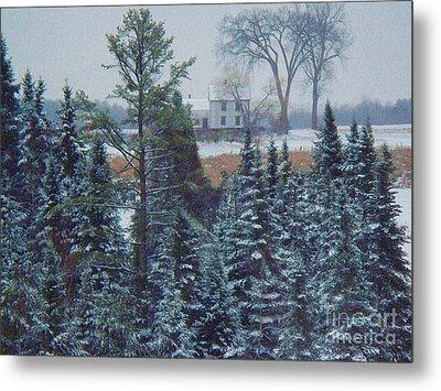 Through The Trees Metal Print by Joy Nichols