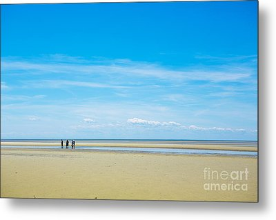 Tidal Flats Of Cape Cod Metal Print by Diane Diederich