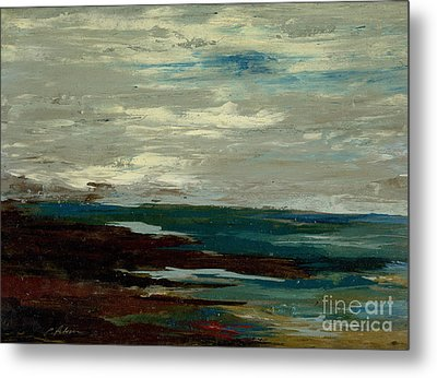 Tide Pools At The Rincon Seashore  Metal Print by Cathy Peterson