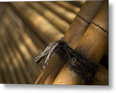 Tied Together Metal Print by Lindsey Weimer