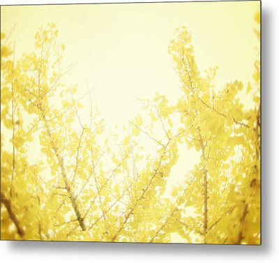 Time After Time Metal Print by Amy Tyler