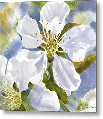 Time To Blossom Metal Print by Joan A Hamilton