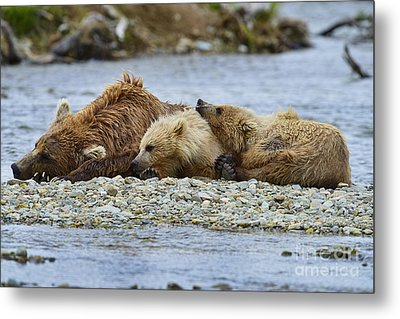 Time To Relax Metal Print by Dan Friend